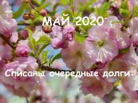 Банкротство физических лиц. Судебная практика Волгоград (май 2020)