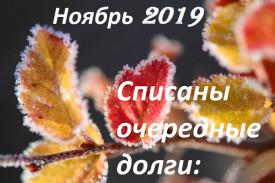 Судебная практика по банкротству граждан в Волгограде (ноябрь 2019)