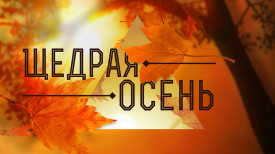 Специальное осеннее предложение по банкротству граждан в Волгограде и Волгоградской области